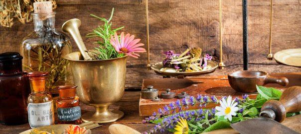 les-plantes-medicinales-sont-de-precieuses-alliees-pour-se-soigner-naturellement