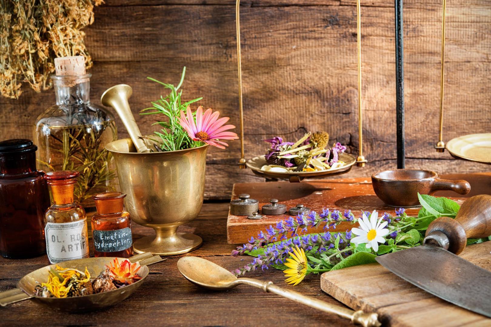 Les plantes médicinales sont de précieuses alliées pour se soigner naturellement