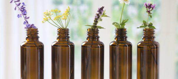 se-soigner-avec-les-fleurs-de-bach-ou-les-sept-aides-du-bon-docteur-bach
