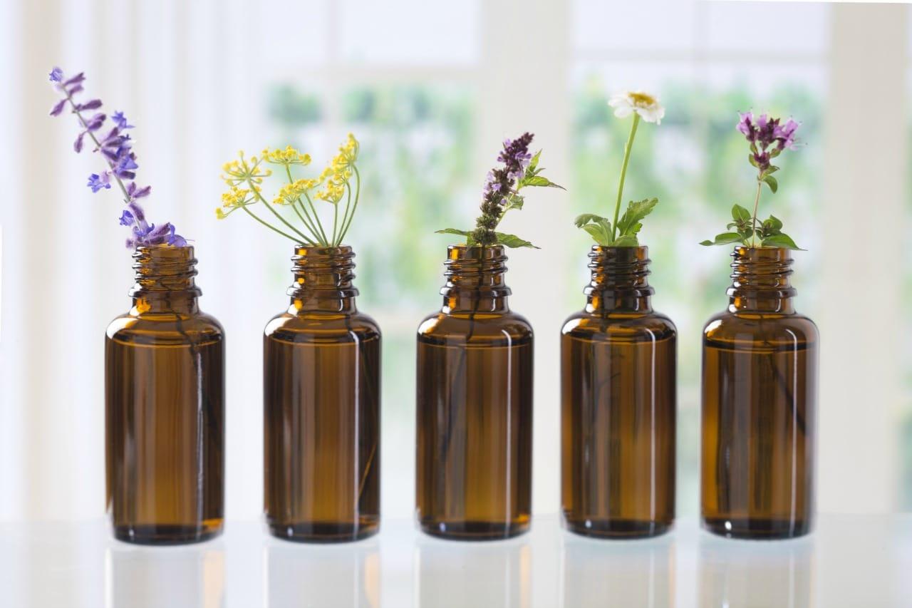 Se soigner avec les fleurs de Bach ou les sept aides du bon docteur Bach