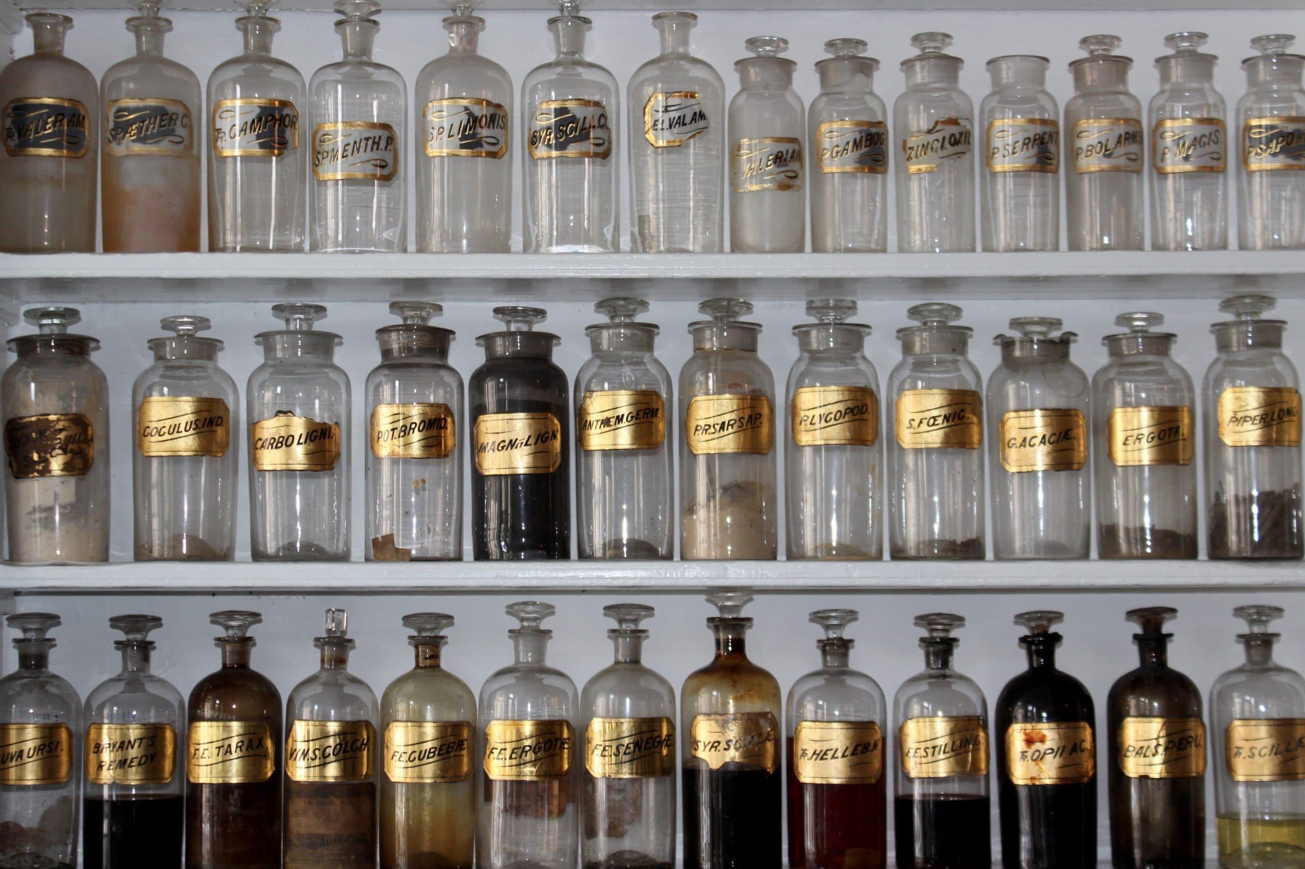 Phytothérapie dans les EHPADs : est-ce efficace ?